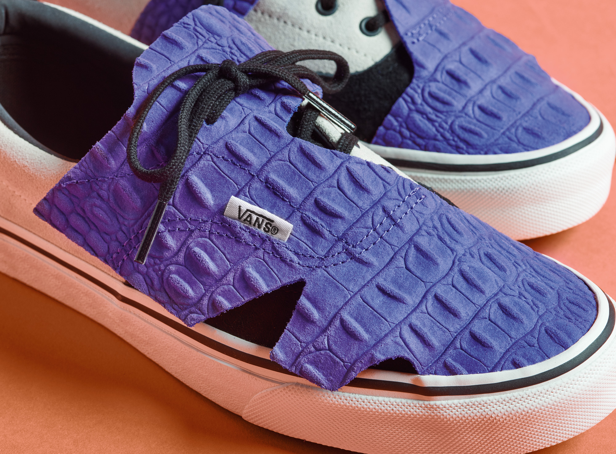 stores that sell van shoes
